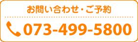電話番号:073-499-5800